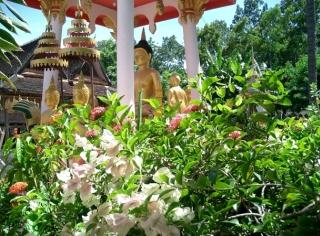 Vientiane.jpg